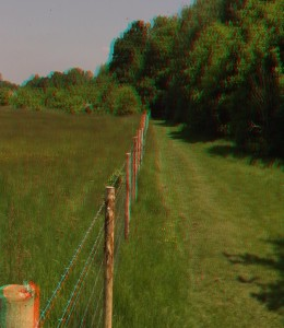 3d_sbs_3d_vr_Cranford_Community_Country_Park_001_anthony_matabaro_free_downloads_apps_games_projects_robotics_quizs_live_wallpapers_more